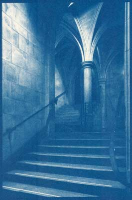 """The Way Up"" Cyanotype Print"