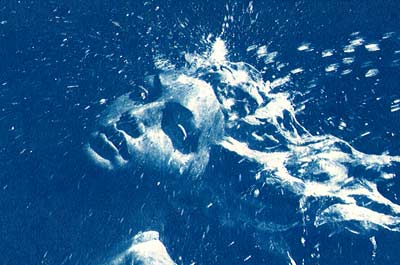 """Splash"" (Scanned Cyanotype)"