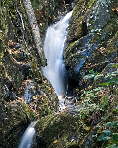Dark Hollow Falls, Shendandoah National Park