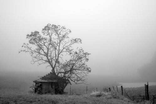 100412-FoggyAM-072-Edit