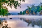 """Misty Morning"""